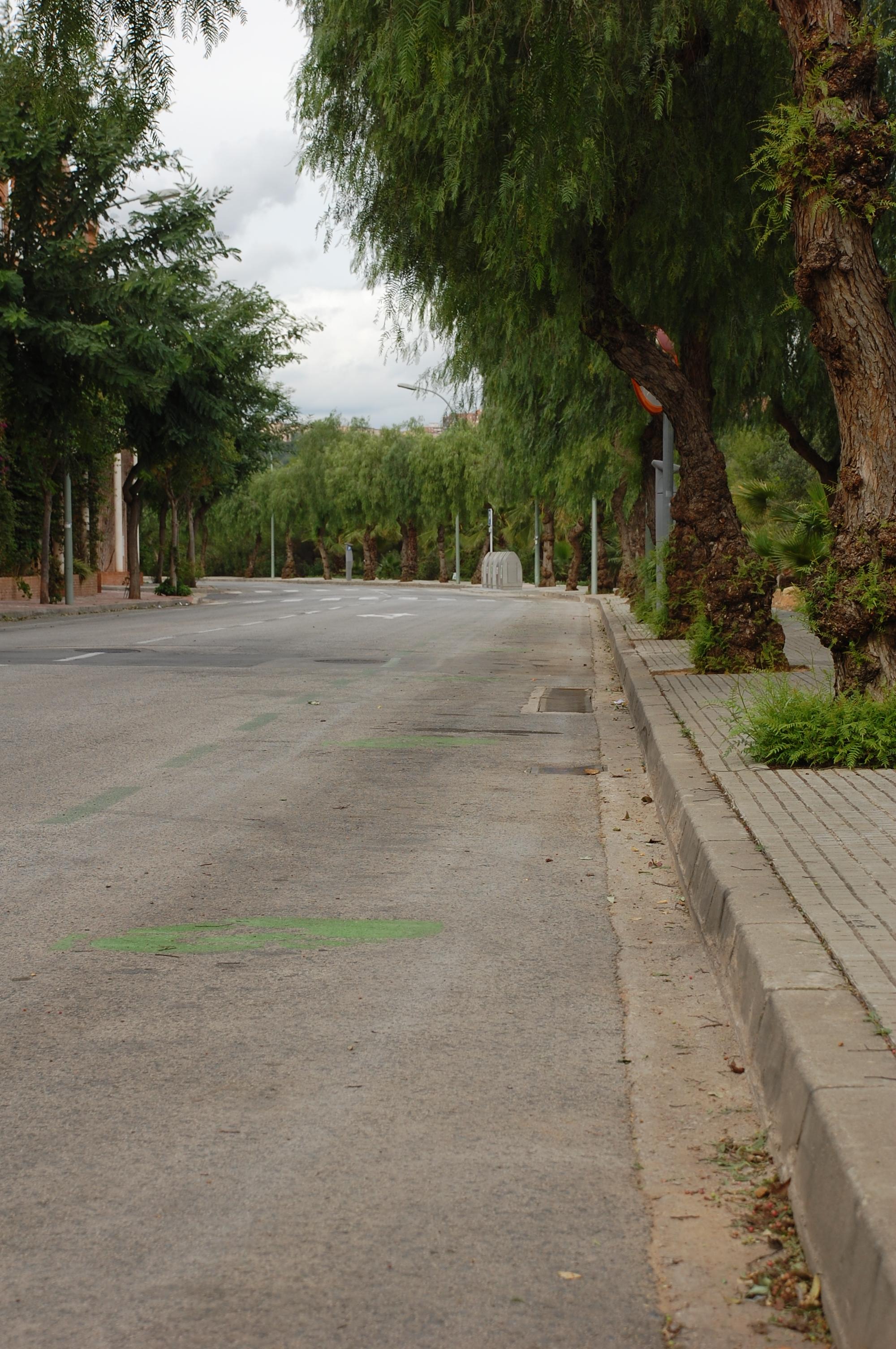 Imatge de carrers buits de cotxes aparcats quan es va implantar la zona verda