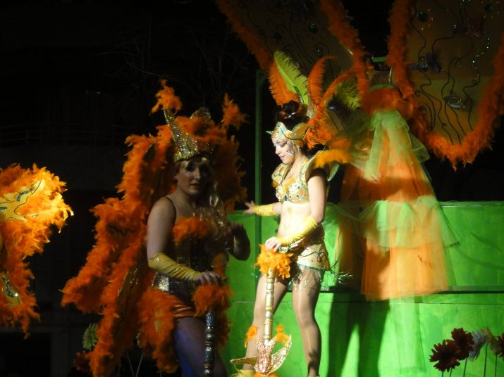 Una de les carrosses participants a la Rua de Carnaval del 2014