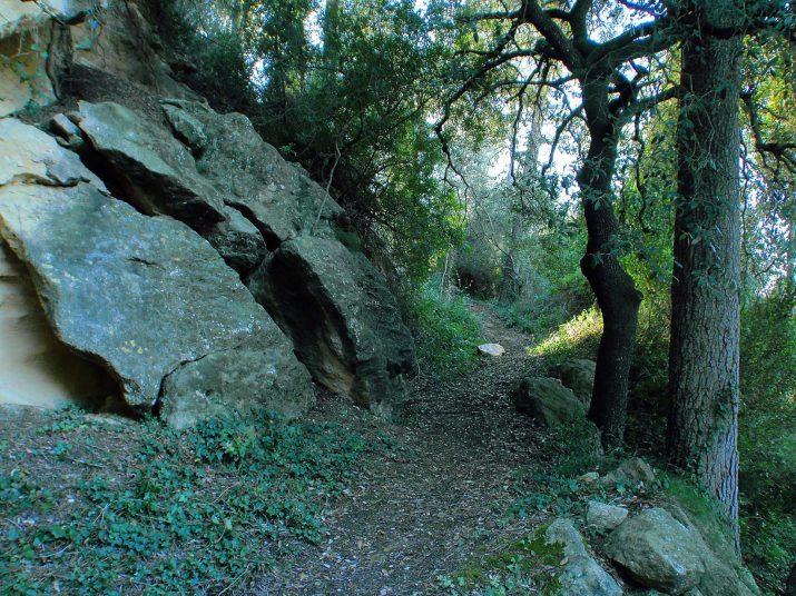 Camí de la Font d'en Garrot (foto: RAFAEL LÓPEZ-MONNÉ)