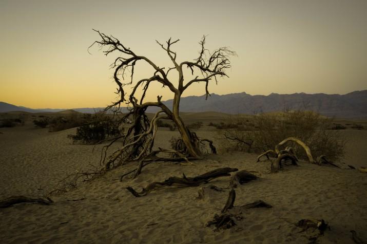Dunes a la Vall de la Mort (foto: GUILLEM ROQUÉ)