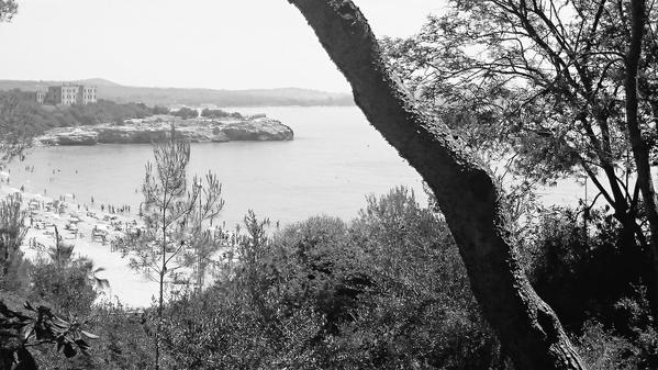 La platja de l'Arrabassada que va enamorar Teresa Rovira (foto cedida per la família)