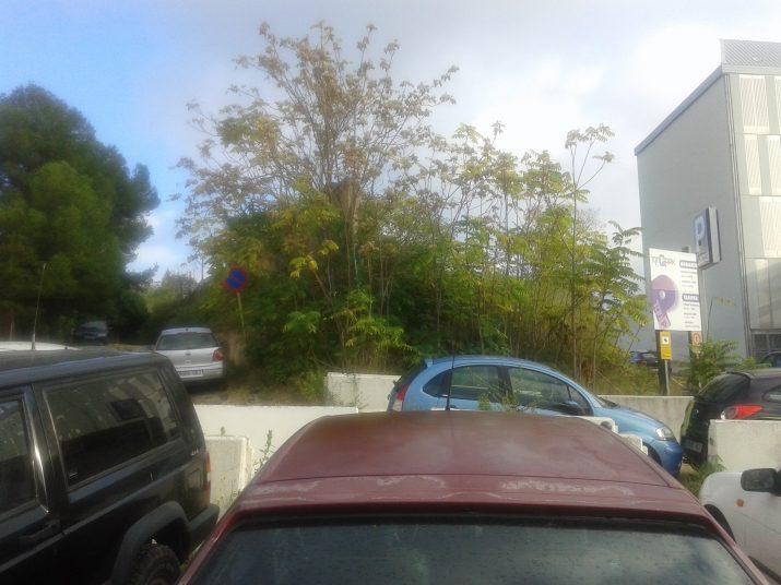 Cotxes aparcats de manera caòtica al costat de la URV, al final de l'avinguda Marquès de Montoliu
