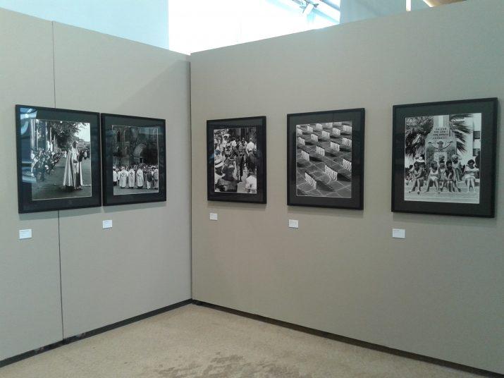 Muntatge de l'exposició 'Atrapa la vida' d'Eugeni Forcano al Tinglado 1 del Moll de Costa