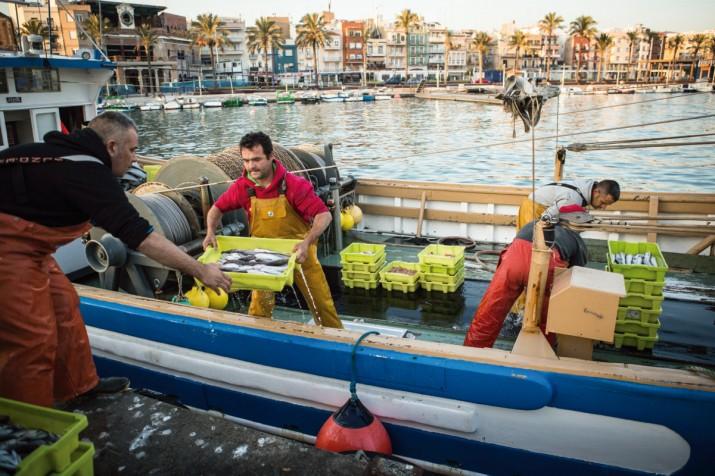 Pescadors tarragonins descarreguen les captures del dia, amb el barri del Serrallo al fons (foto: DAVID OLIETE)