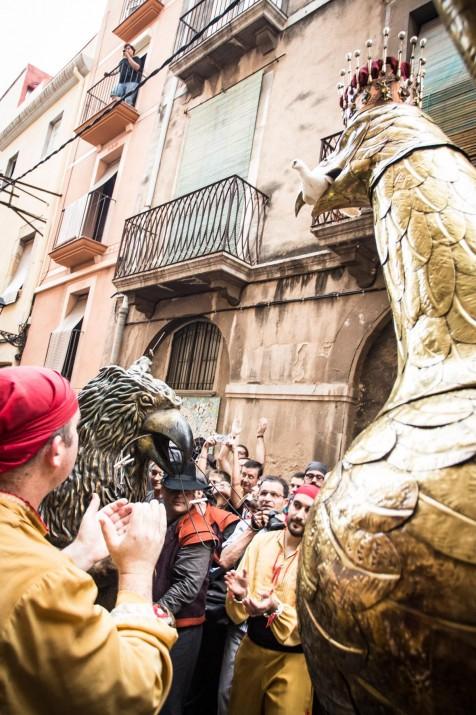 L'Àliga a les Festes de Santa Tecla. Foto: DAVID OLIETE