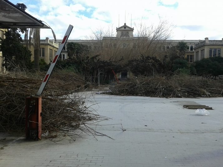 Aspecte de deixadesa dels jardins de Tabacalera. La fàbrica es va tancar fa 9 anys i encara no hi ha un pla director per donar-li ús. Foto: FET a TARRAGONA