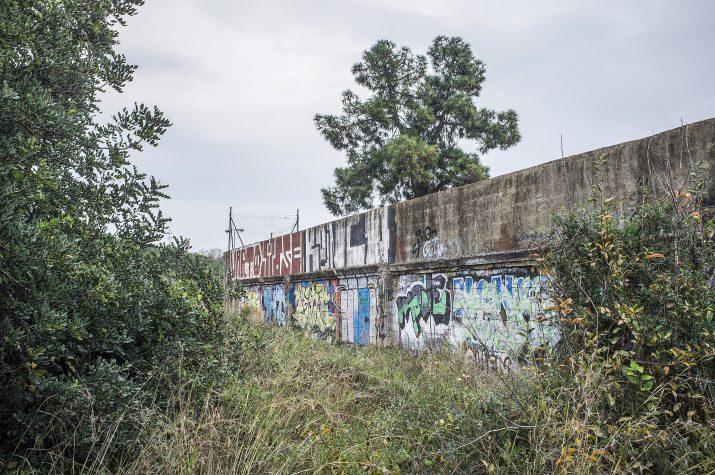 Un dels murs envoltats de vegetació que encara hi ha a tocar de la vella circumval·lació de la N-340 al seu pas per Tarragona. Foto: PEP ESCODA