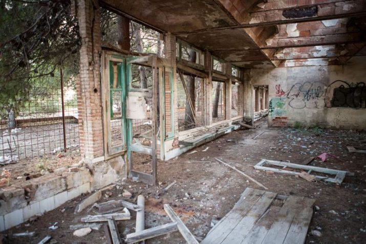 L'interior dels edificis presenten un estat ruinós. Foto: DAVID OLIETE